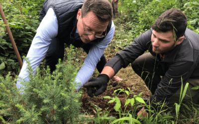 Besuch im Klimawald: Die Schwäbische Post pflanzt Bäume